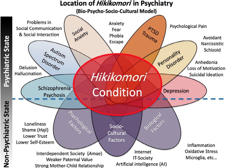 הפרעות פסיכיאטריות המופיעות לצד נסיגה חברתית ביפן