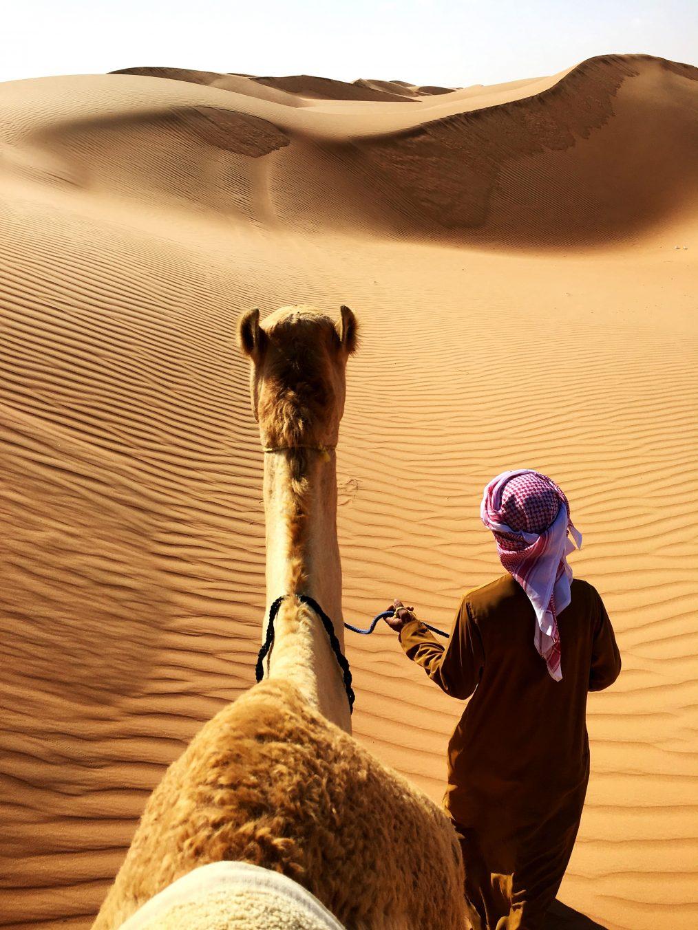 איש עם גמל במדבר