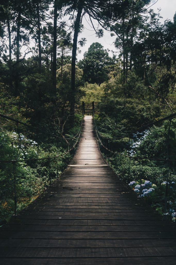 גשר בין שיקום וטיפול בבריאות הנפש